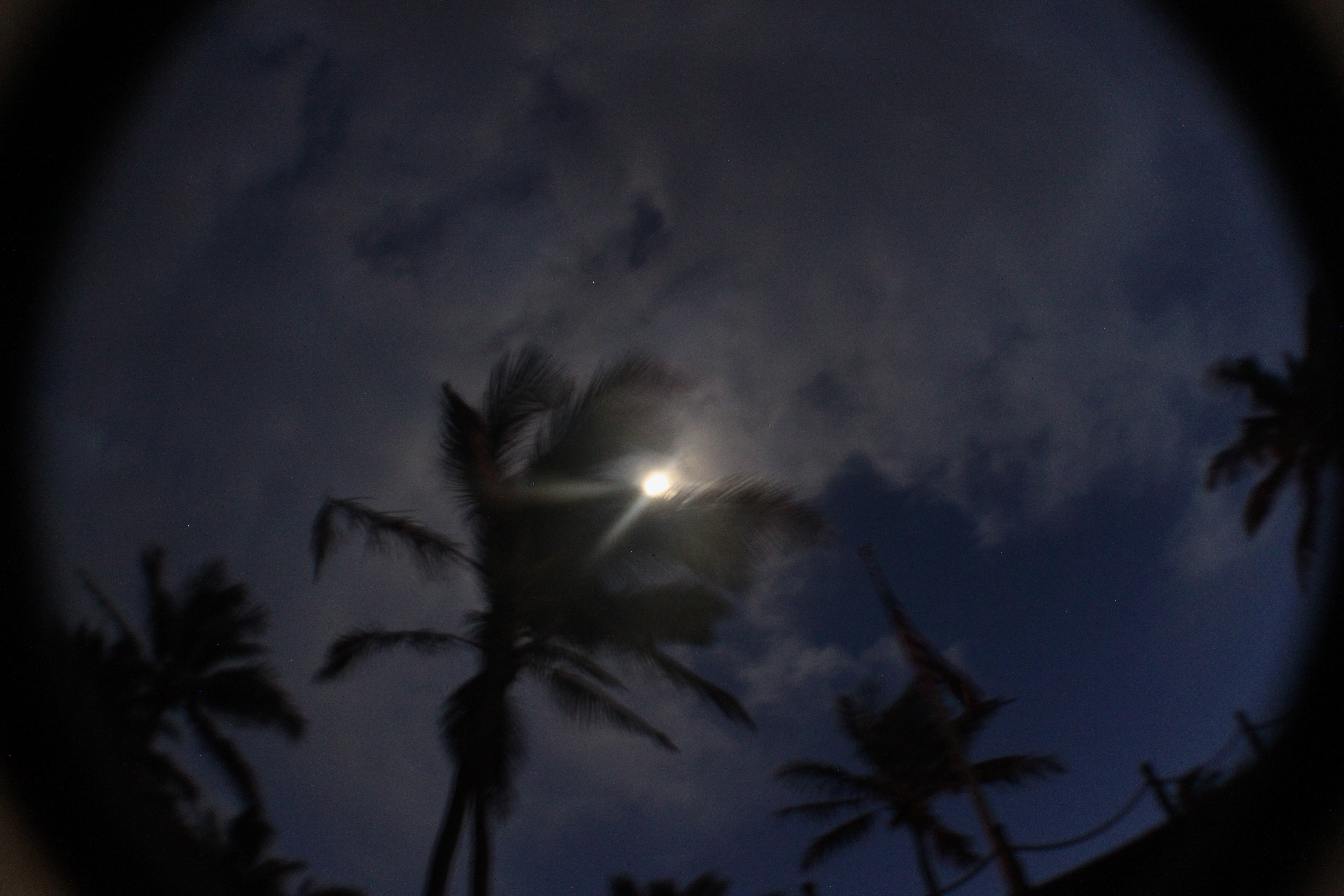 View of the Paia Maui Moon